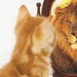 The Power of Beliefs - Christina Constantinou